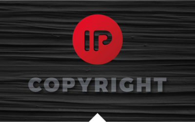 Copyright protection over a portal